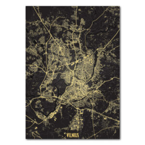 Vilniaus naktinis žemėlapis